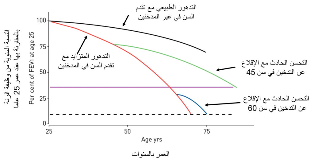 lungs graph