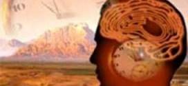 biologic-clock