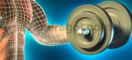 صورة تعبيرية لذراع و صدر رجل يظهر بها تكوين العضلى و يحمل ثقلا كأنه يتمرن