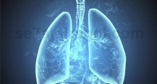 cancer n smoking